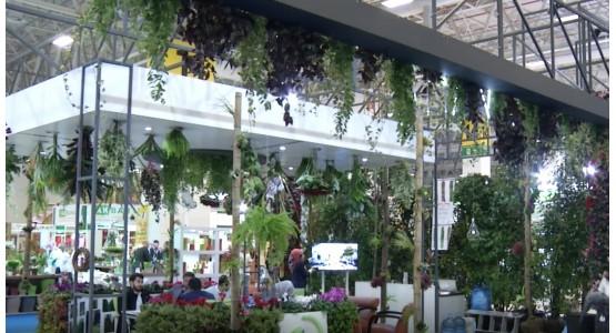 Flower Show İstanbul-έκθεση φυτών